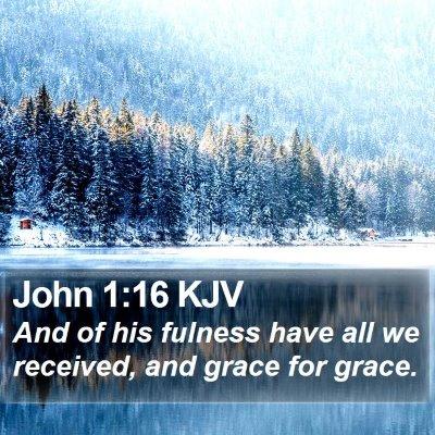 John 1:16 KJV Bible Verse Image