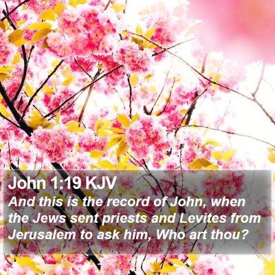 John 1:19 KJV Bible Verse Image