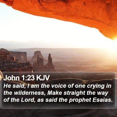 John 1:23 KJV Bible Verse Image