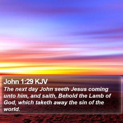 John 1:29 KJV Bible Verse Image