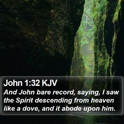 John 1:32 KJV Bible Verse Image