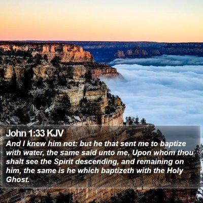 John 1:33 KJV Bible Verse Image
