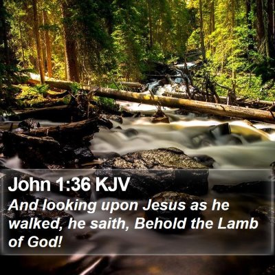 John 1:36 KJV Bible Verse Image