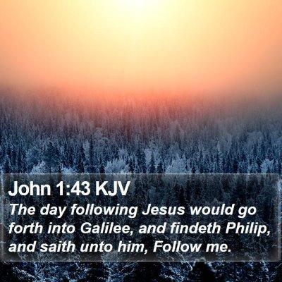 John 1:43 KJV Bible Verse Image