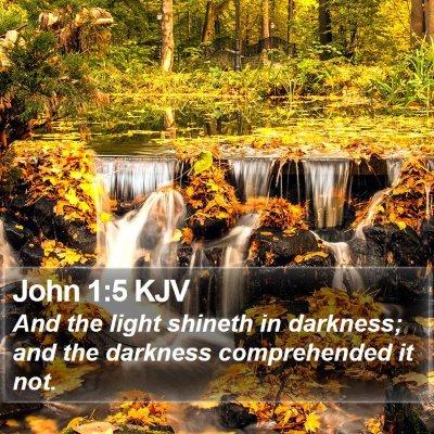 John 1:5 KJV Bible Verse Image
