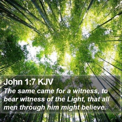 John 1:7 KJV Bible Verse Image