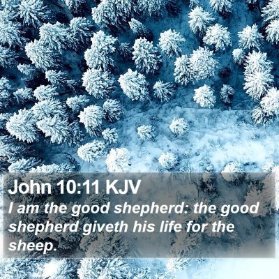 John 10:11 KJV Bible Verse Image
