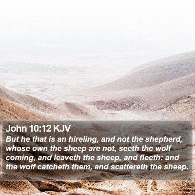 John 10:12 KJV Bible Verse Image