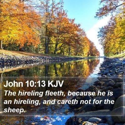 John 10:13 KJV Bible Verse Image