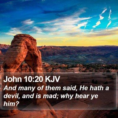 John 10:20 KJV Bible Verse Image