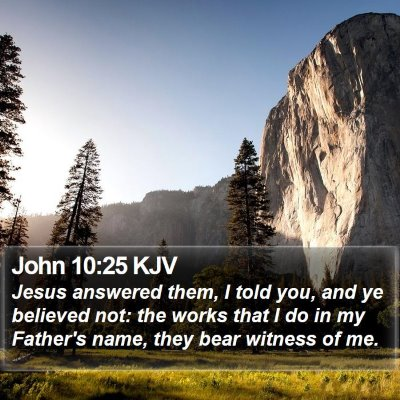 John 10:25 KJV Bible Verse Image