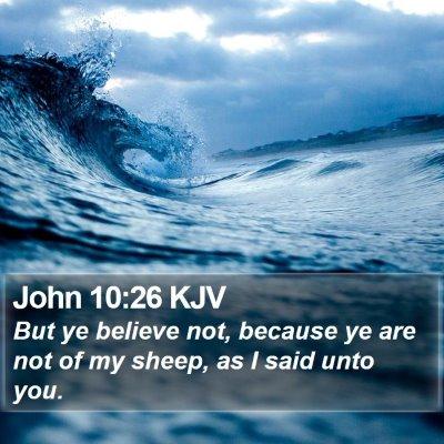 John 10:26 KJV Bible Verse Image