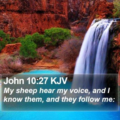 John 10:27 KJV Bible Verse Image