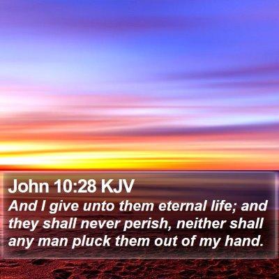 John 10:28 KJV Bible Verse Image