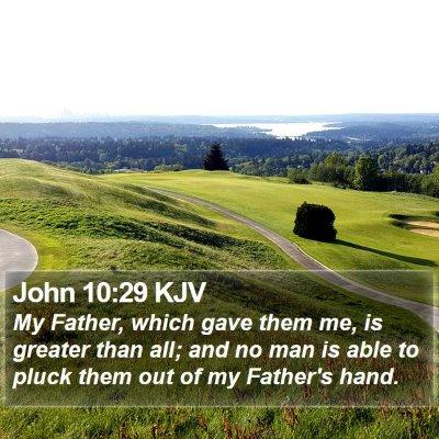 John 10:29 KJV Bible Verse Image