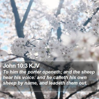 John 10:3 KJV Bible Verse Image