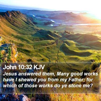 John 10:32 KJV Bible Verse Image