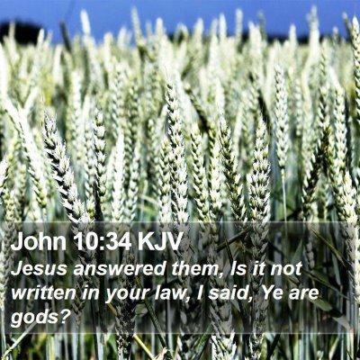 John 10:34 KJV Bible Verse Image
