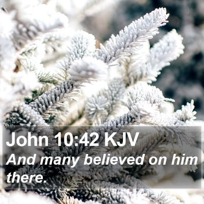 John 10:42 KJV Bible Verse Image