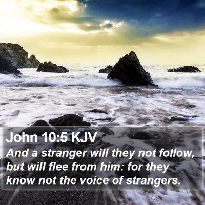 John 10:5 KJV Bible Verse Image