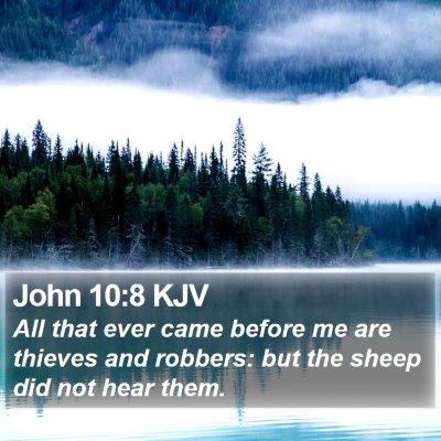 John 10:8 KJV Bible Verse Image
