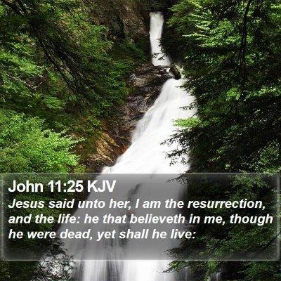 John 11:25 KJV Bible Verse Image