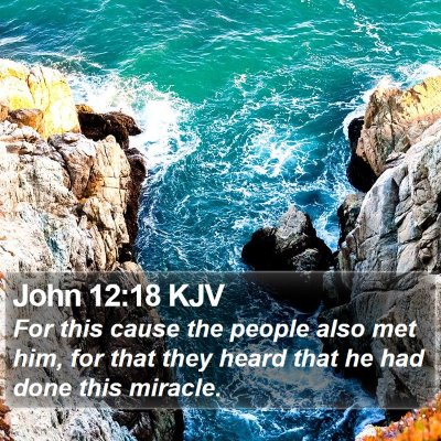 John 12:18 KJV Bible Verse Image