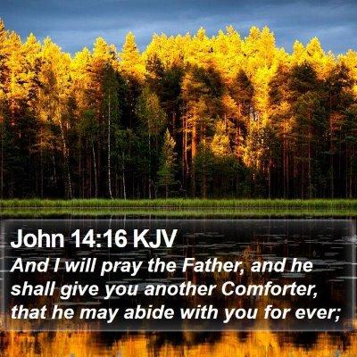 John 14:16 KJV Bible Verse Image