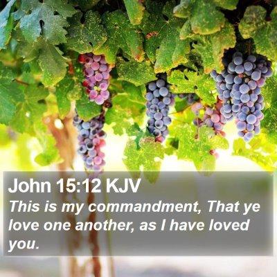 John 15:12 KJV Bible Verse Image
