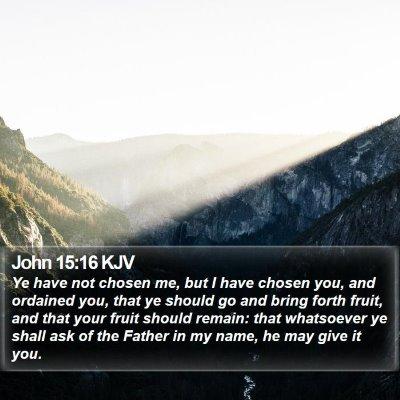John 15:16 KJV Bible Verse Image