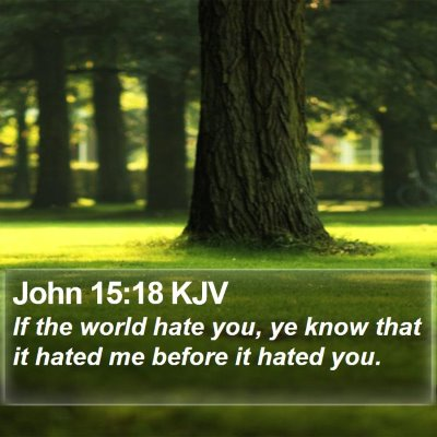 John 15:18 KJV Bible Verse Image