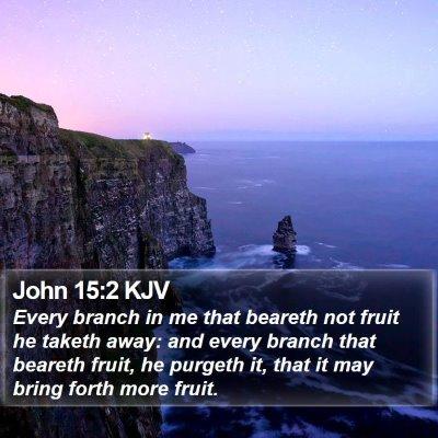 John 15:2 KJV Bible Verse Image