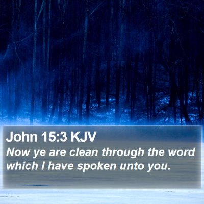 John 15:3 KJV Bible Verse Image