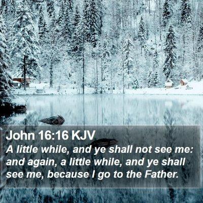 John 16:16 KJV Bible Verse Image