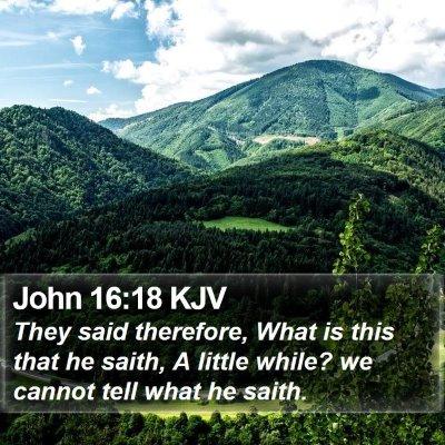 John 16:18 KJV Bible Verse Image