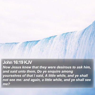 John 16:19 KJV Bible Verse Image