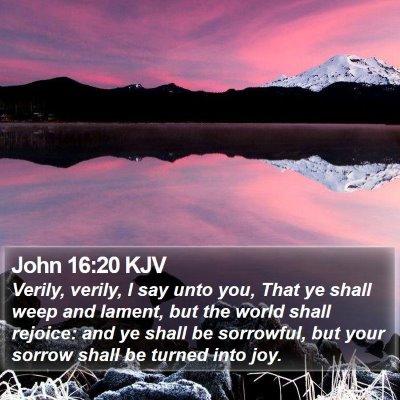 John 16:20 KJV Bible Verse Image