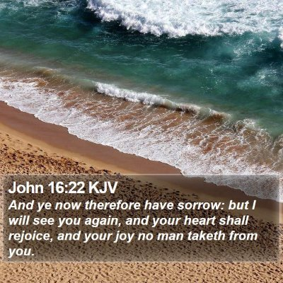 John 16:22 KJV Bible Verse Image