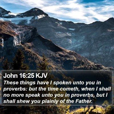 John 16:25 KJV Bible Verse Image