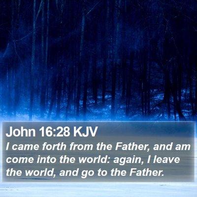 John 16:28 KJV Bible Verse Image