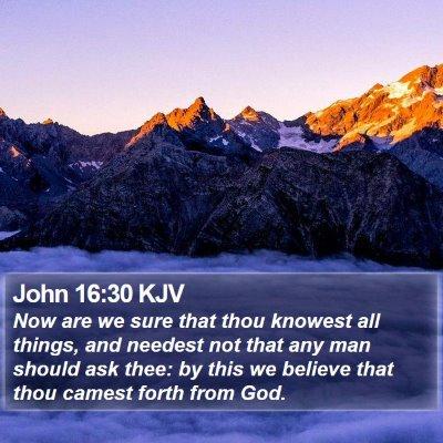 John 16:30 KJV Bible Verse Image