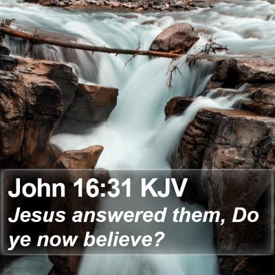 John 16:31 KJV Bible Verse Image