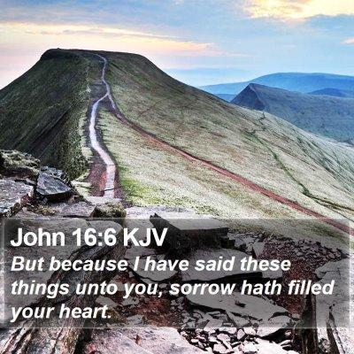 John 16:6 KJV Bible Verse Image