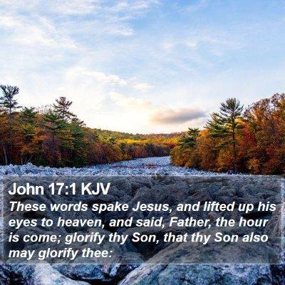John 17:1 KJV Bible Verse Image