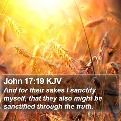 John 17:19 KJV Bible Verse Image