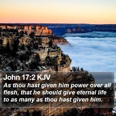 John 17:2 KJV Bible Verse Image