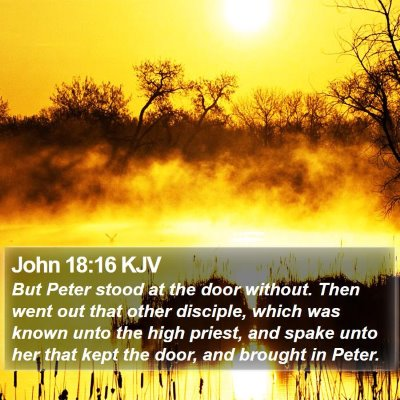 John 18:16 KJV Bible Verse Image