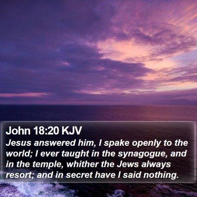 John 18:20 KJV Bible Verse Image