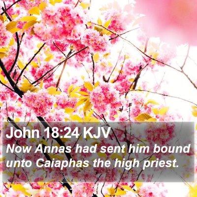 John 18:24 KJV Bible Verse Image