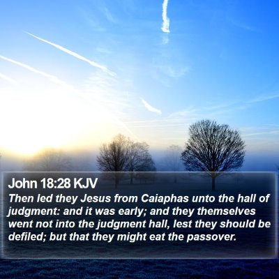 John 18:28 KJV Bible Verse Image